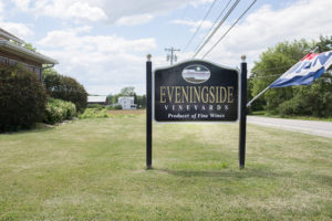 eveningsidevineyards-21